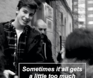 shawn, love, and mendes image