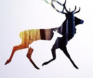 deer and wallpaper image