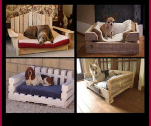 pallets and diy dog beds image