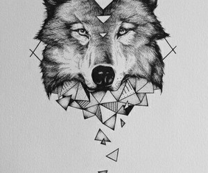 wolf and wallpaper image