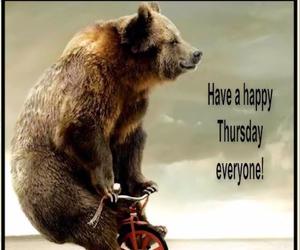 bear and thursday image