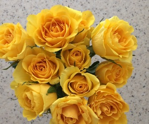 aesthetic, roses, and yellow image