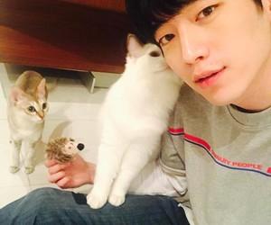 cat, 고양이, and 서강준 image