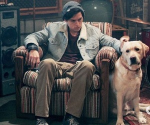 Action, actor, and dog image