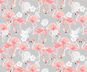 animal, background, and bird image