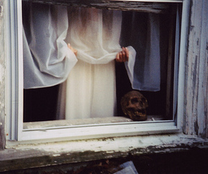 skull, window, and white image