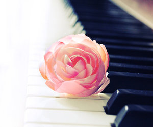 piano, flowers, and pink image