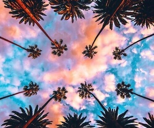 sky, palms, and summer image