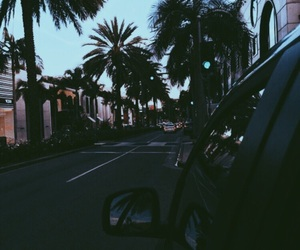 blue, car, and palm trees image