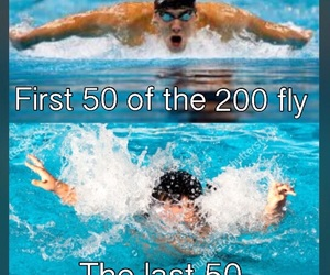 fitness, humor, and fly image