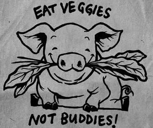 animal rights, buddies, and pigs image