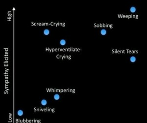 writing, writing advice, and types of crying image