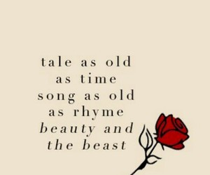 beauty and the beast, rose, and tale image