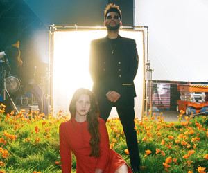 the weeknd, lust for life, and lana del rey image