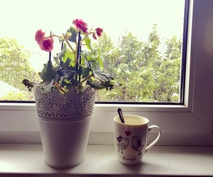coffe, morning, and flower image