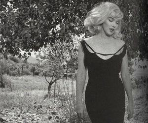 beautiful, Marilyn Monroe, and amazing image