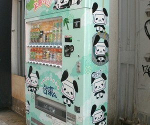 japan, drink, and panda image