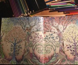 drawing, johannabasford, and enchantedforest image
