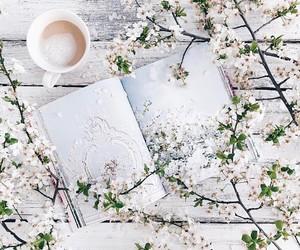 blossom, pretty, and photo image