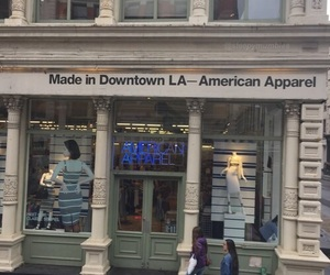 aesthetic, grunge, and american apparel image
