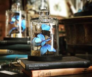 books, papers, and butterflies image