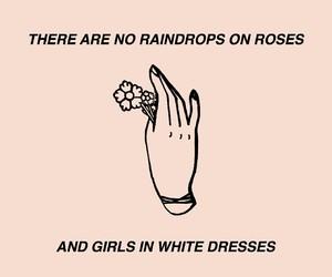 aesthetic, brendon urie, and Lyrics image