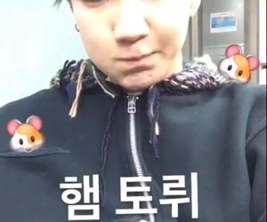 kpop, lq, and seunghoon image