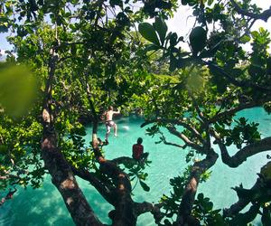 beach, paradise, and nature image