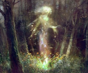 forest, fairy, and fantasy image