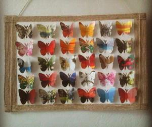 butterfly, home decor, and picture on the wall image