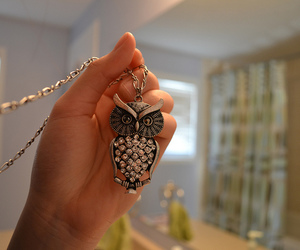 photography, owl, and necklace image