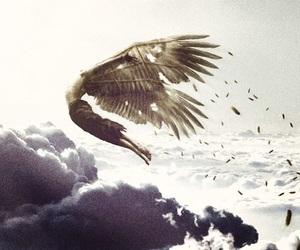 angel and sky image
