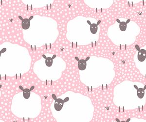 animal and sheep image