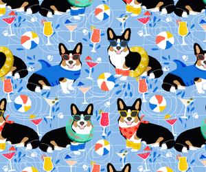animal, background, and corgi image