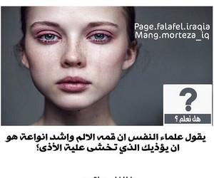 arabic, هل تعلم, and ﻋﺮﺑﻲ image