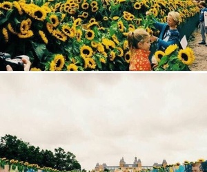 art, sunflowers, and museum image