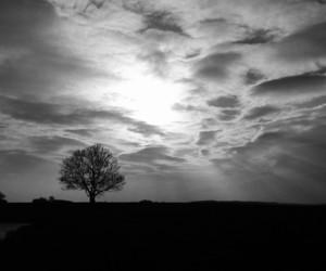 b&w, blackandwhite, and sky image