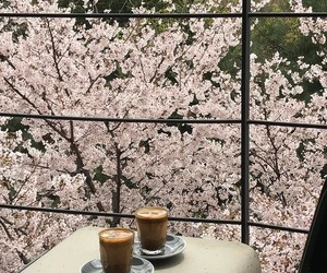 blossom and coffee image
