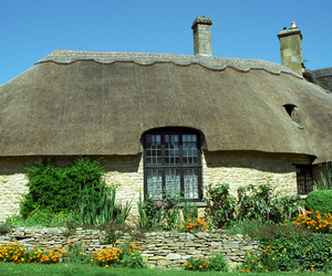 architecture, cottages, and climbing roses image