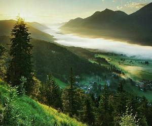fog, landscape, and mountain image