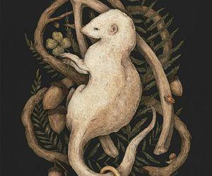 acorn, illustration, and key image