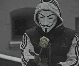 rose, anonymous, and adidas image