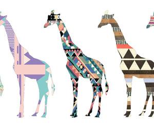 giraffe, animal, and pattern image