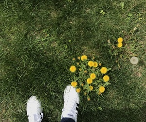 adidas, flowers, and spring image