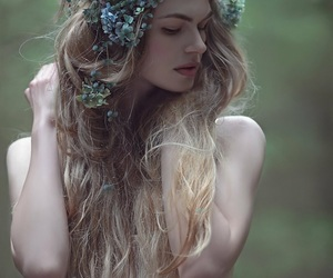 beautiful, earthy, and forest image
