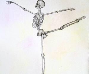 skeleton, art, and drawing image
