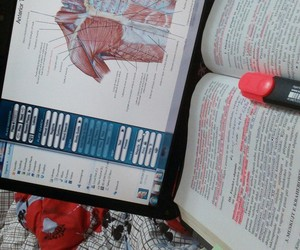 body, inspiration, and medicine image