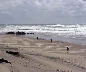 beach, pacific ocean, and oregon image