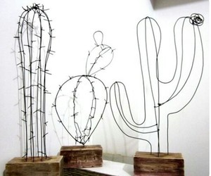 cactus and art image