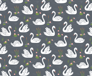 animal, bird, and background image